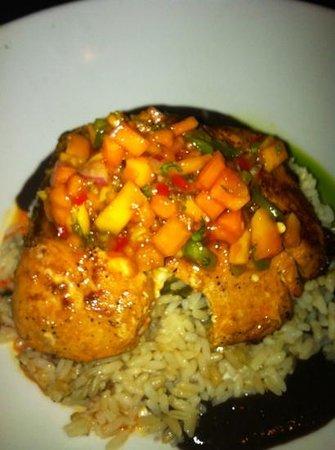 Southwest NY: mahi mahi with mango papaya salsa, pilaf rice and black bean purée