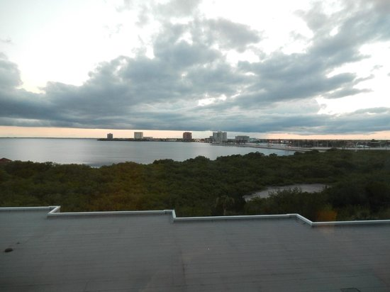 Grand Hyatt Tampa Bay: A view from the room