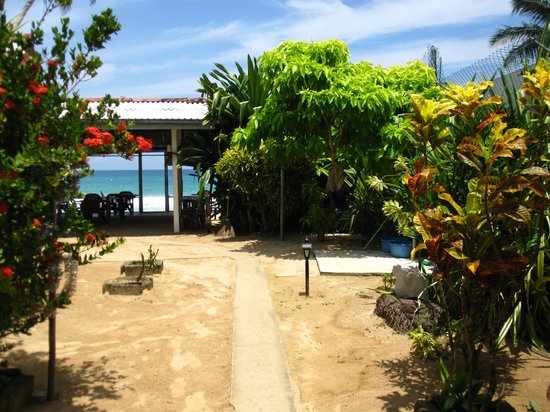 Ocean Moon Guesthouse & Cabanas: Garten
