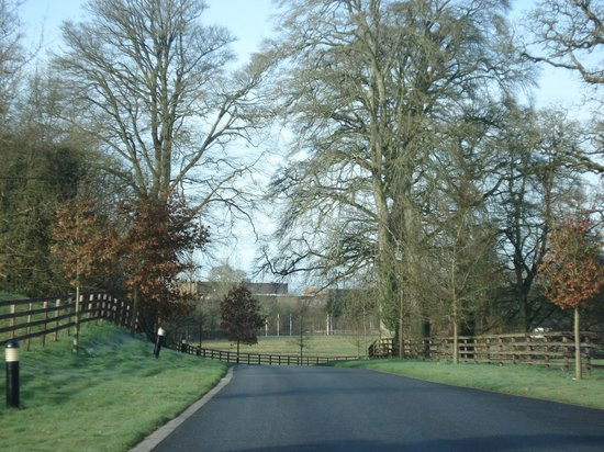 Lyrath Estate Hotel & Spa: Entering Lyrath