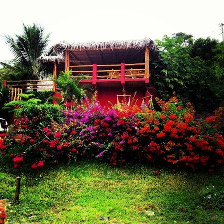 La Buena Vida Hotel- Ayampe: The garden at the entrance