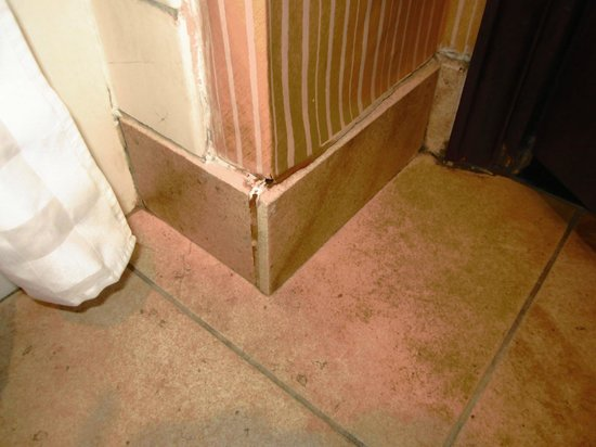 The Fess Parker - A Doubletree by Hilton Resort: MOLDY SHOWER TILE