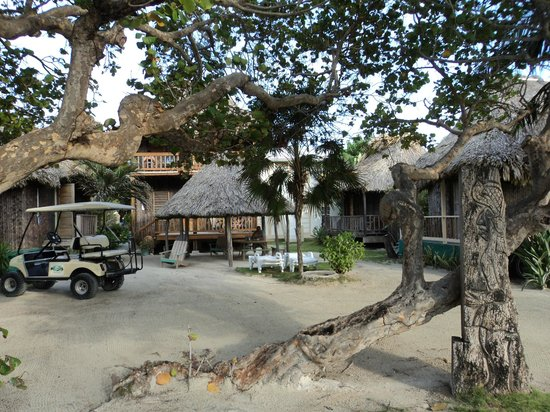 The palapa at Hotel del Rio where guest gather nitely and become friends.