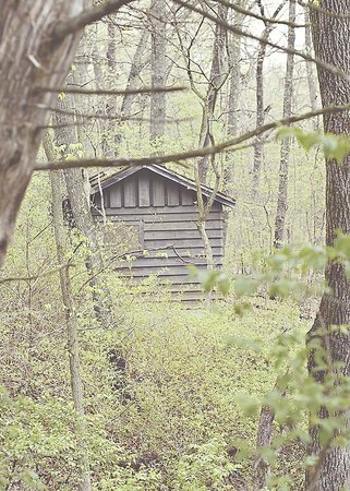 Siloam Springs State Park: A hidden shack
