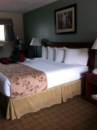 Murphy's River Lodge: chambre