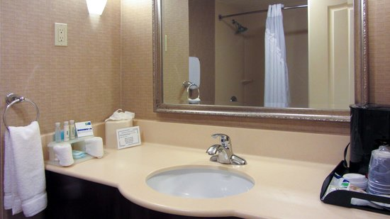 Holiday Inn Express Hotel & Suites Hollywood Hotel Walk of Fame: Bathroom