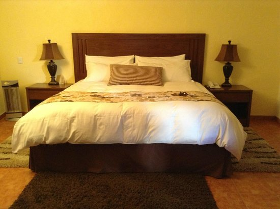 "Hotel Boutique La Granja: ""mezquite room"""