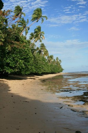 Nakia Resort & Dive : 'Blue lagoon' beach
