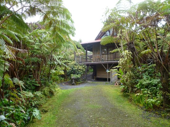 Lotus Garden Cottages: View of Aloha Moon cottage from where our car was parked