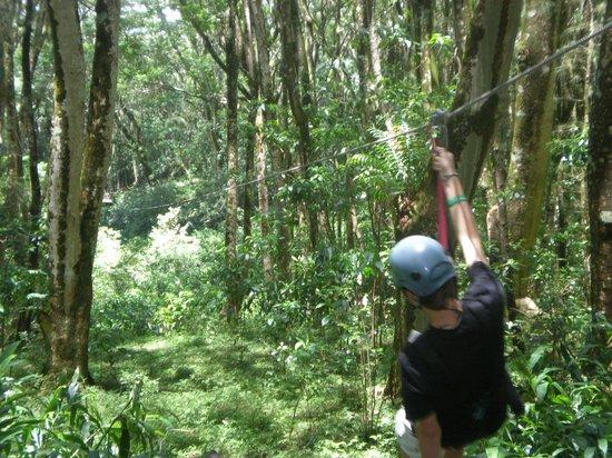 Mauna Kea Resort Golf Course : Zipline tour