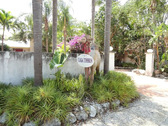 Casa Thorn Bed & Breakfast: Fron entrance