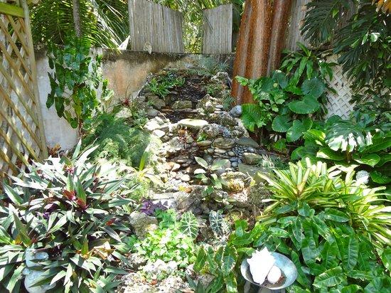Casa Thorn Bed & Breakfast: Waterfall