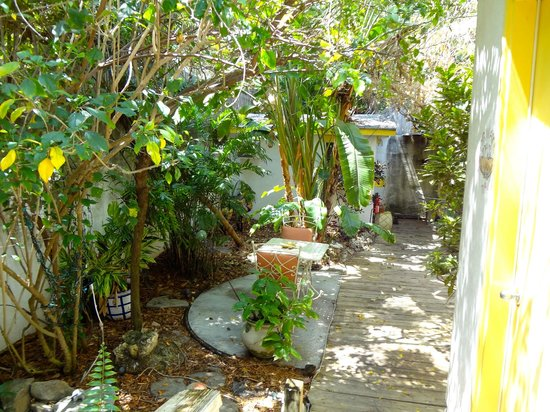 Casa Thorn Bed & Breakfast : Very private and relaxing