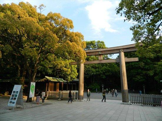 park - Picture of Yoyogi Park, Shibuya - TripAdvisor