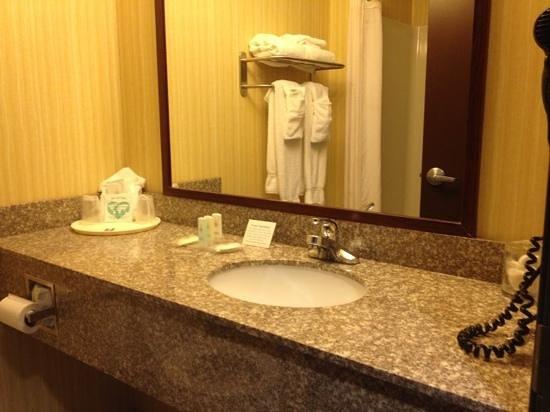 Comfort Inn Williamsport: bathroom