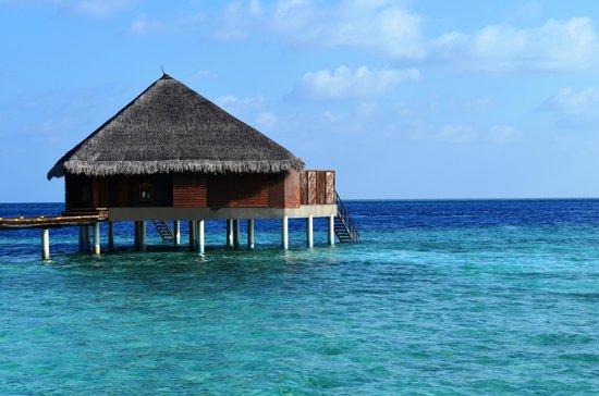 Adaaran Club Rannalhi: beach
