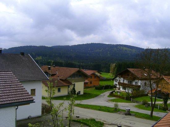 Landgasthof & Musikhotel Tonihof: Zimmeraussicht