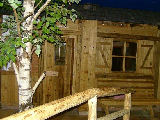 Landgasthof & Musikhotel Tonihof: Sauna