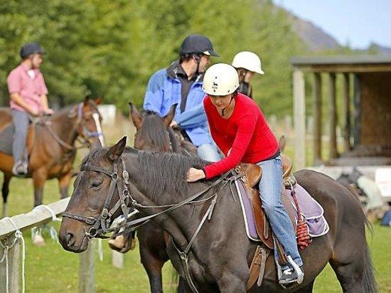 Where To Go Horseback Riding In New Zealand South Island