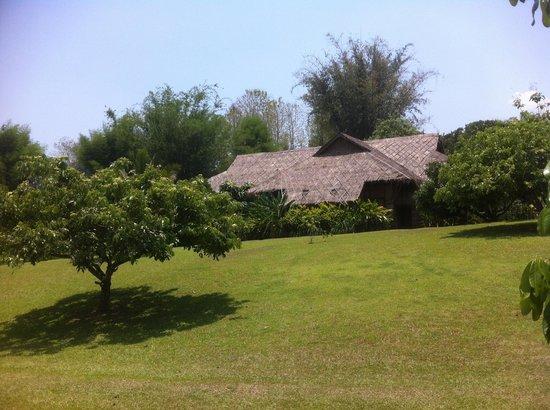 Lisu Lodge: Gartenanlage