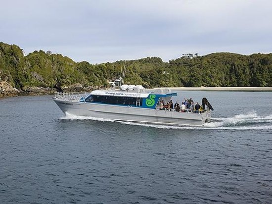 Stewart Island Experience - Marine Nature Cruises : Cruising the coastline in our catamaran