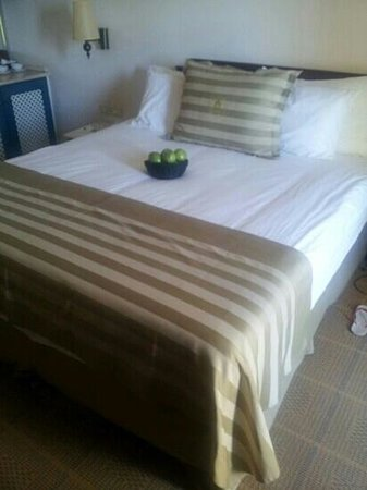Herods Vitalis Spa Hotel Eilat : very big and comfterbal bed..