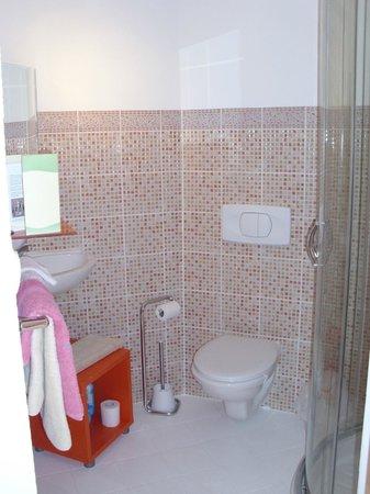 Ferme de Lagrave : En suite bathroom