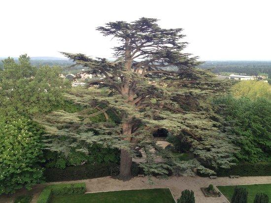 Chateau de Varenne : Parc