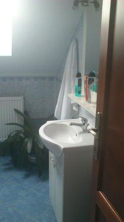 Pension Paldus : Bathroom