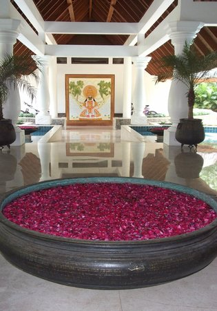 Carnoustie Ayurveda & Wellness Resort: Reception