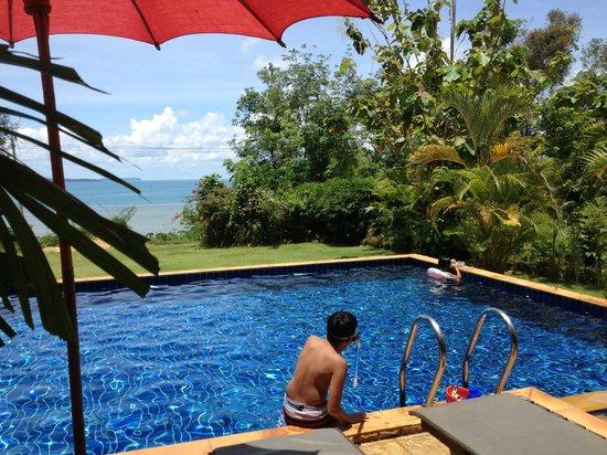 Bamboo Hideaway: La piscine