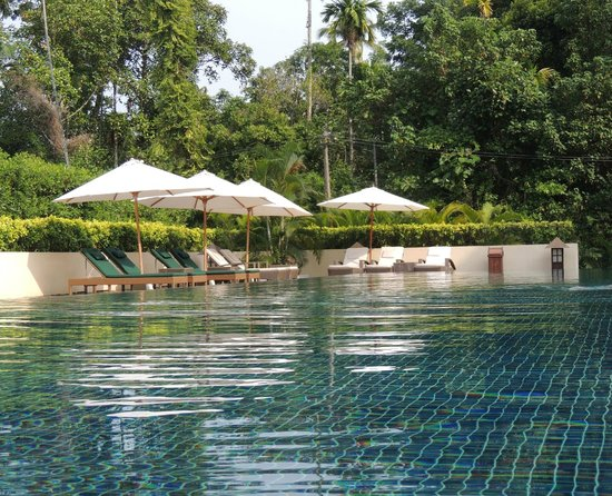 Carnoustie Ayurveda & Wellness Resort: Shared Pool