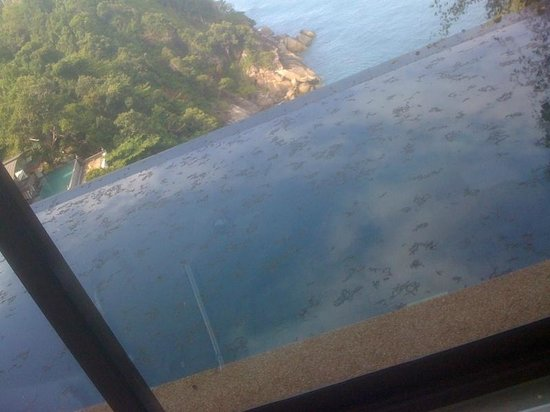 Paresa Resort Phuket: pool
