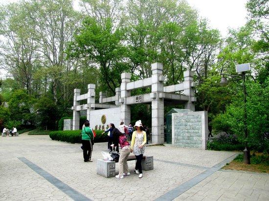 Purple Mountain (Zijin Shan): Ворота на эту гору со стороны городской стены