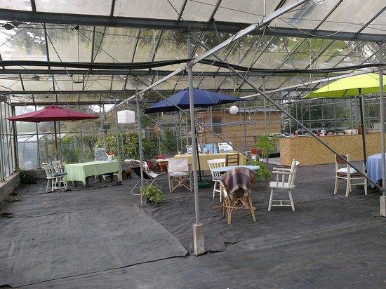 Woodland Cottage Garden: Glasshouse tea area