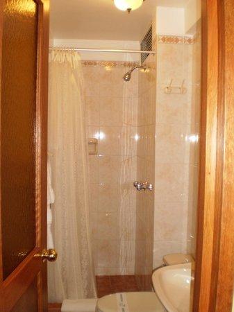 Hotel Torre Dorada: BATH ROOM