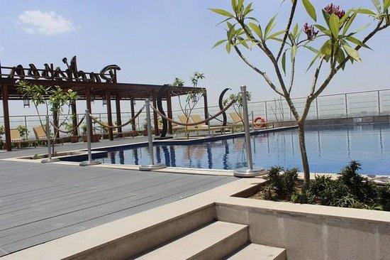 Radisson Blu Jaipur: Roof Top Pool