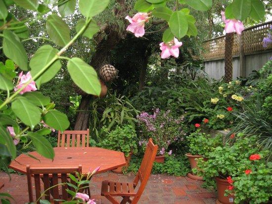 Emu Point B&B: Serene private courtyard