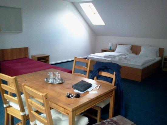 Hotel Stary Pivovar: Stanza 202