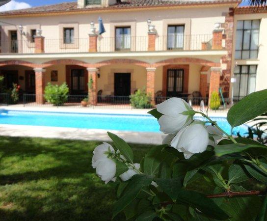 El Palacio de Monfarracinos: jardin y terraza
