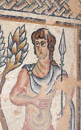Israel Travel Company: Ancient mosaic at Tzipori