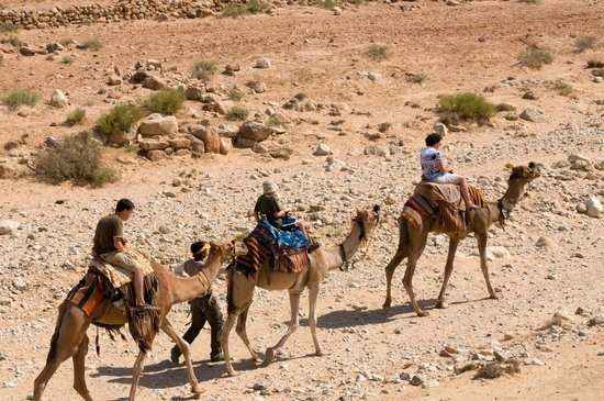Israel Travel Company - Private Guide Day Tours