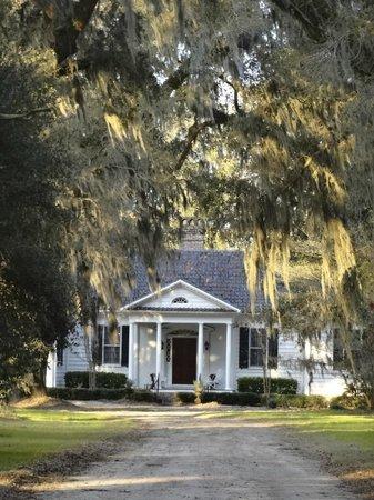 Mansfield Plantation : Main house