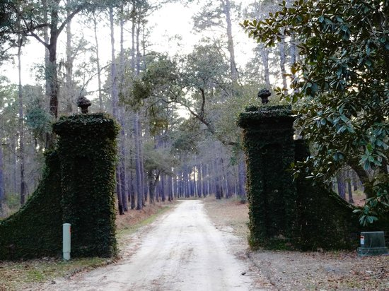 Mansfield Plantation: Entrance