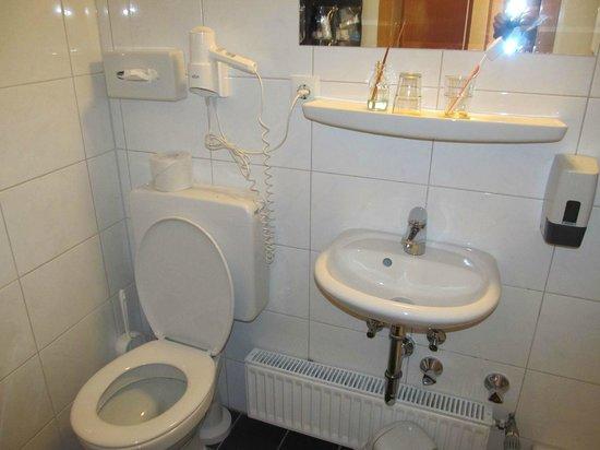 Hotel Weierich: Toilet and sink