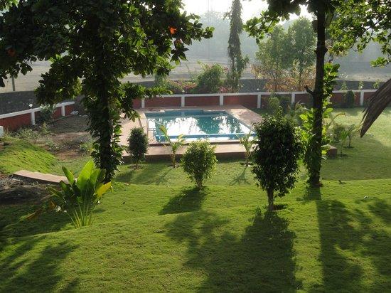 Green Valley Resort: Swimming Pool