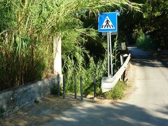 Riserva Naturale fiume Ciane: the walking path starts here