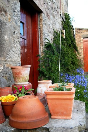 Violet Bank House: Old pots in the garden