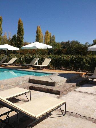 Finca Adalgisa Wine Hotel, Vineyard & Winery: The Pool