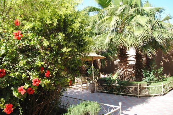 Taroudant, Morocco: jardin intérieur